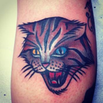 Colored Cat Tattoo Josh Stephens